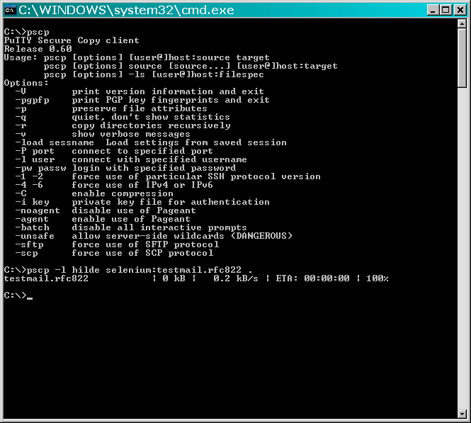 Screenshot: cmd.exe mit pscp.exe (usage) und Kopiervorgang